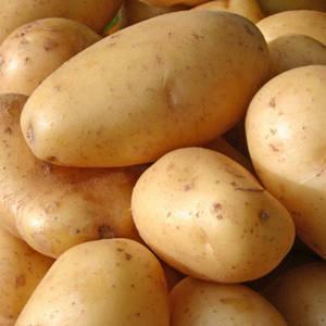 Fresh Potatoes & Frozen French Fries