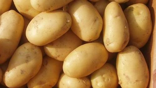 Potatoes Fresh