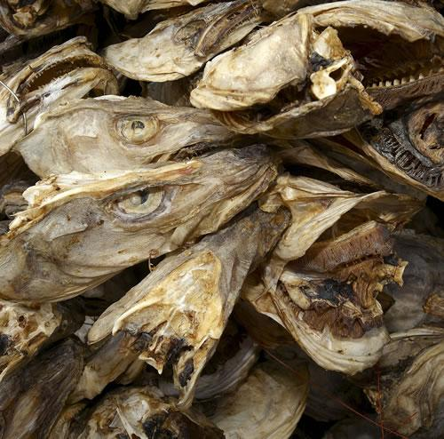 Dry Stock Fish Cods And Heads