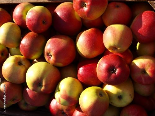 Ligol apples