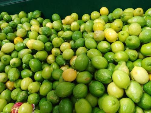 Citron Dhalia
