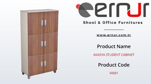 School Cabinet