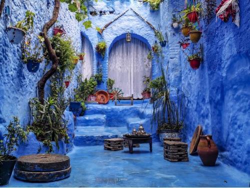 consulenza e servizi per il Marocco