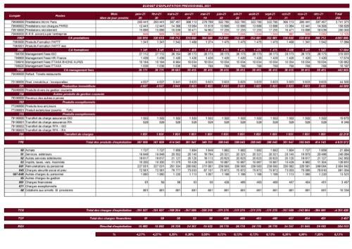 Budget d'exploitation prévisionnel