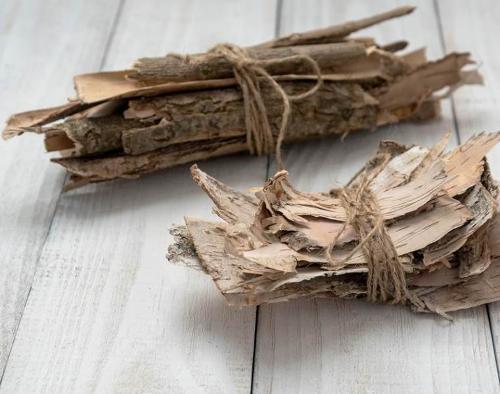 Buckthorn Bark // Frangulae Cortex