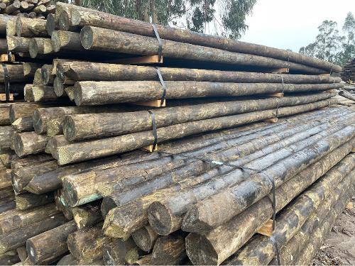 Postes de madeira preservados