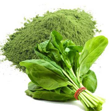 Organic EU Spinach Powder