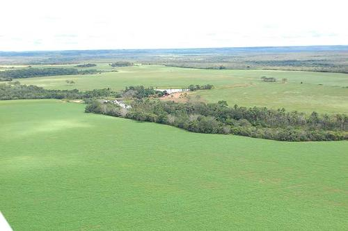 Farmland for sale in Tocantins Brasil