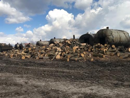 Древесный уголь Premium-class