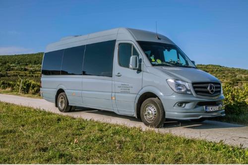 International coach bus rental