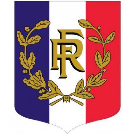 Écusson Porte-drapeaux Tricolore + Rf Et Palmes Gamme Éco
