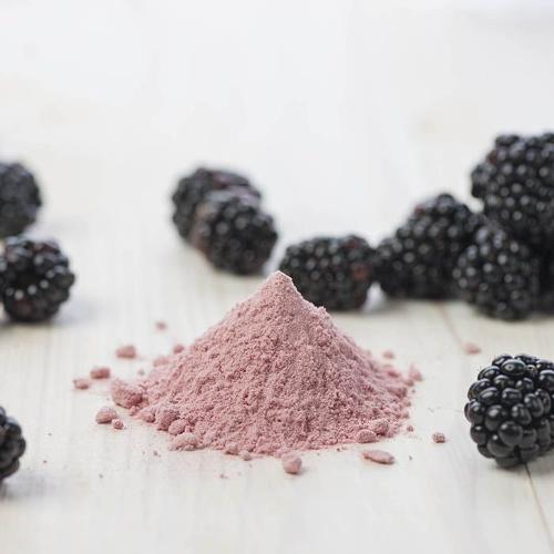 Ronce (Rubus caesius) extrait sec