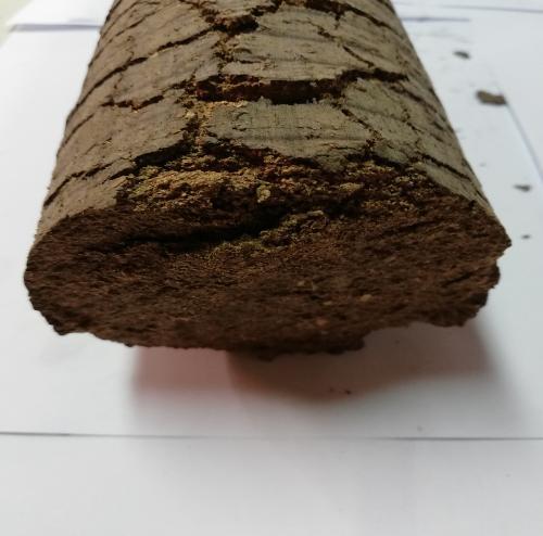 Firewood Briquettes