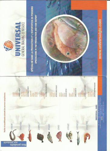 Poisson Frais - Congelé et Farine de poisson