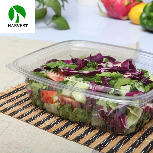 Harvest Disposable Ops Salad Cookies Fruit Bowl Container With Lid