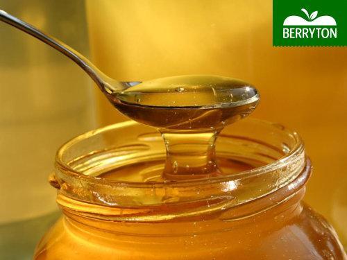 Honey polifloral