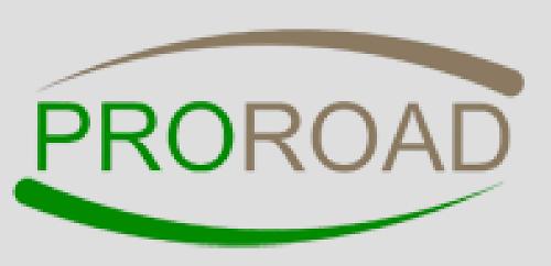 drogi ekologiczne z zastosowaniem polimerów