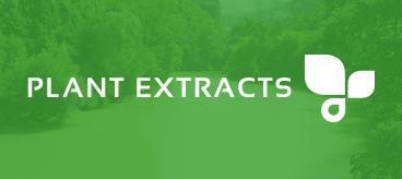 Wild Yam Extract 16 % Diosgenin