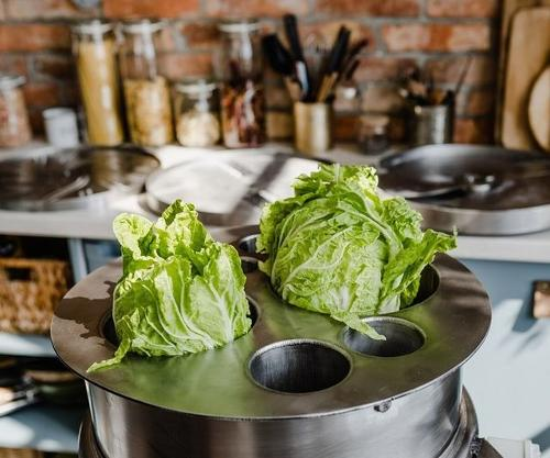 coupeuse trancheuse salades et légumes