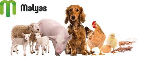 Animal food supplement