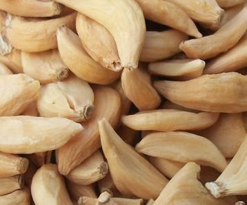 Deydrated garlic
