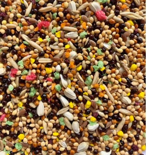 Feed for budgies with pellets
