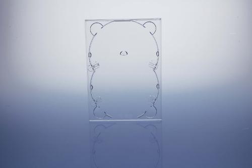 DVD Digitray für 2 Discs - transparent - kartoniert