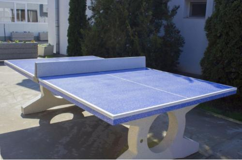 Table tennis table Model 89