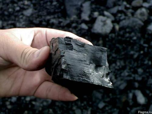 Birch Coal