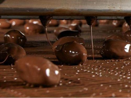 lignes industrie chocolat et confiserie Enrobage Glaçage