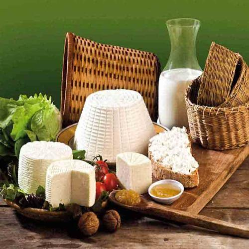 Authentic dairy products of Calabria