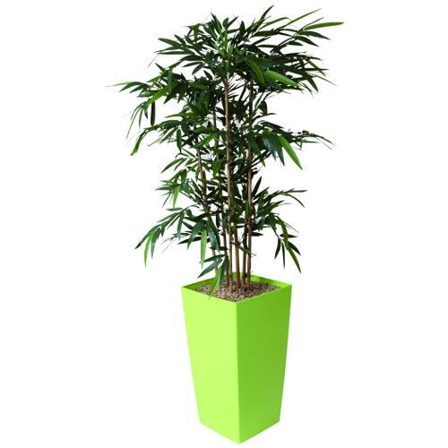 Bac Carré Haut Bambou