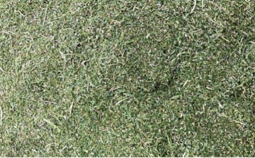 Hemp Biomass CBD rich Certified Organic