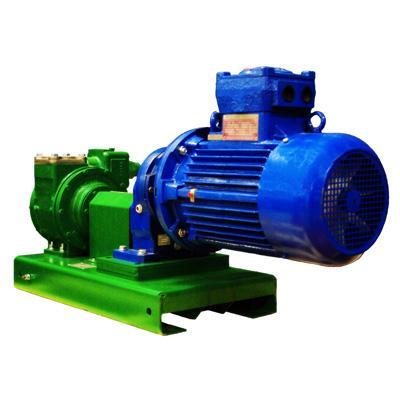 Fuel & Oil Pumps