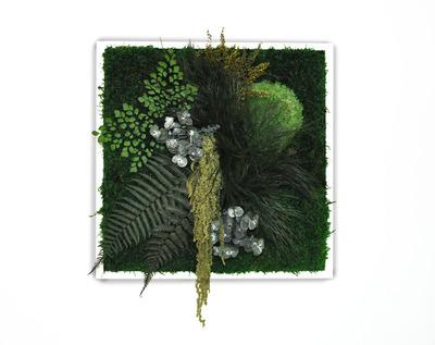 Cadre végétal stabilisé en 40x40cm