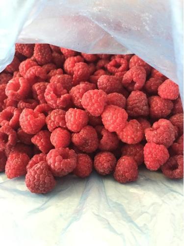 Frozen Raspberry (Rubus-idaeus)