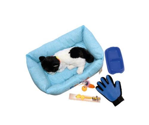 Cat 5in1 Starter Kit