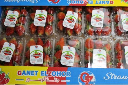 Ägyptische frische Erdbeeren