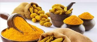 All kind of Spices- import-export