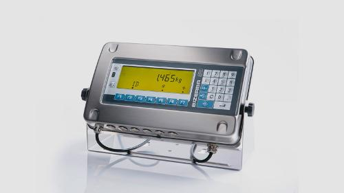 Standard weighing terminal ST-Ex