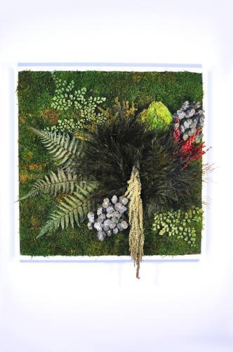 Cadre végétal stabilisé en 60cm par 60cm