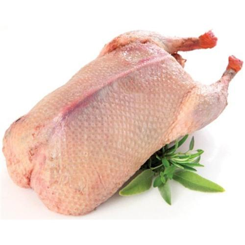 Pato Inteiro, congelado