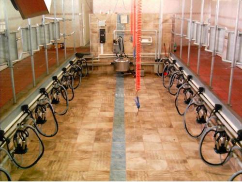 AsilFarm ASL-B-SSS Süt Sağım Odaları