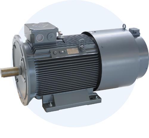 DS-Asynchronmotore