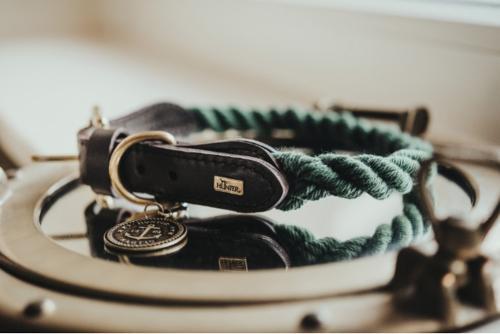 collier pour chien corde