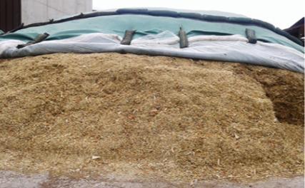 Article en plastique pour l'agriculture