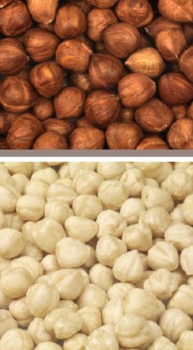 Hazelnuts Giresun and Turkey