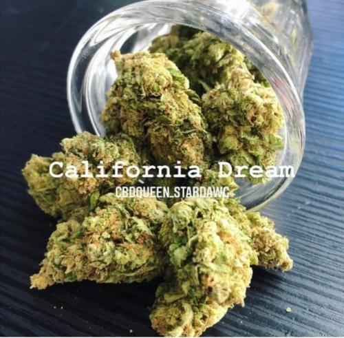 California Dream, Fleur de cbd hydroponique