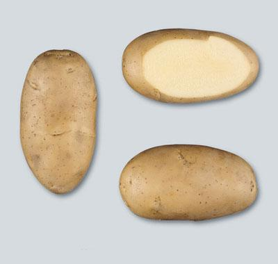 Potatoes - Yellow skin