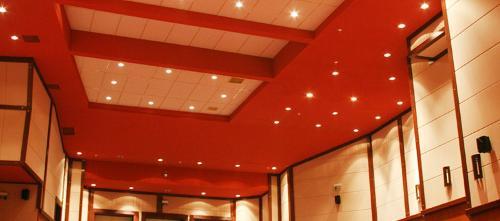 Acoustic Velum Wall Panels